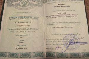 Сертификаты_Мельник Александр