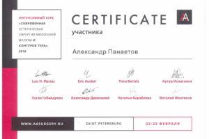Сертификаты_Александр Панаетов
