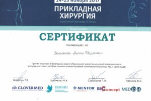 Lesnyakov_diploma18