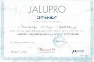 Lesnyakov_diploma23